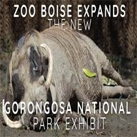 Zoo Boise Expands - The New Gorongosa National Park Exhibit