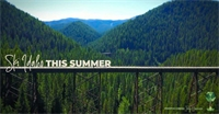Get Excited to Ski Idaho This Summer