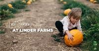 Enjoy One Last Season at Linder Farms
