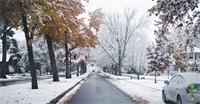 10 Reasons Idaho Will Turn That Frown Upside Down This Holiday Season