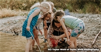 EverWild Forest School: A Whole-Child Approach to Education in an Outdoor Classroom