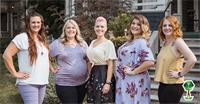Common Surrogacy Myths Busted by Abundant Life, A Local Boise Surrogacy Agency