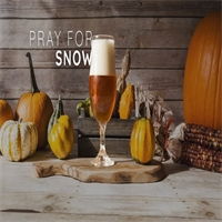 Fall Means: Beer & Festivals