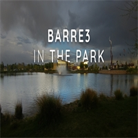Barre3 in the Park