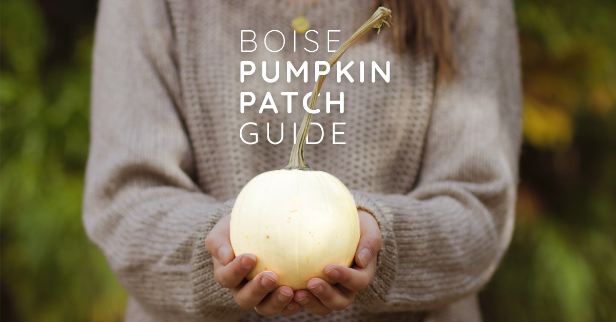 Your Guide to Pumpkin Patches Around Boise