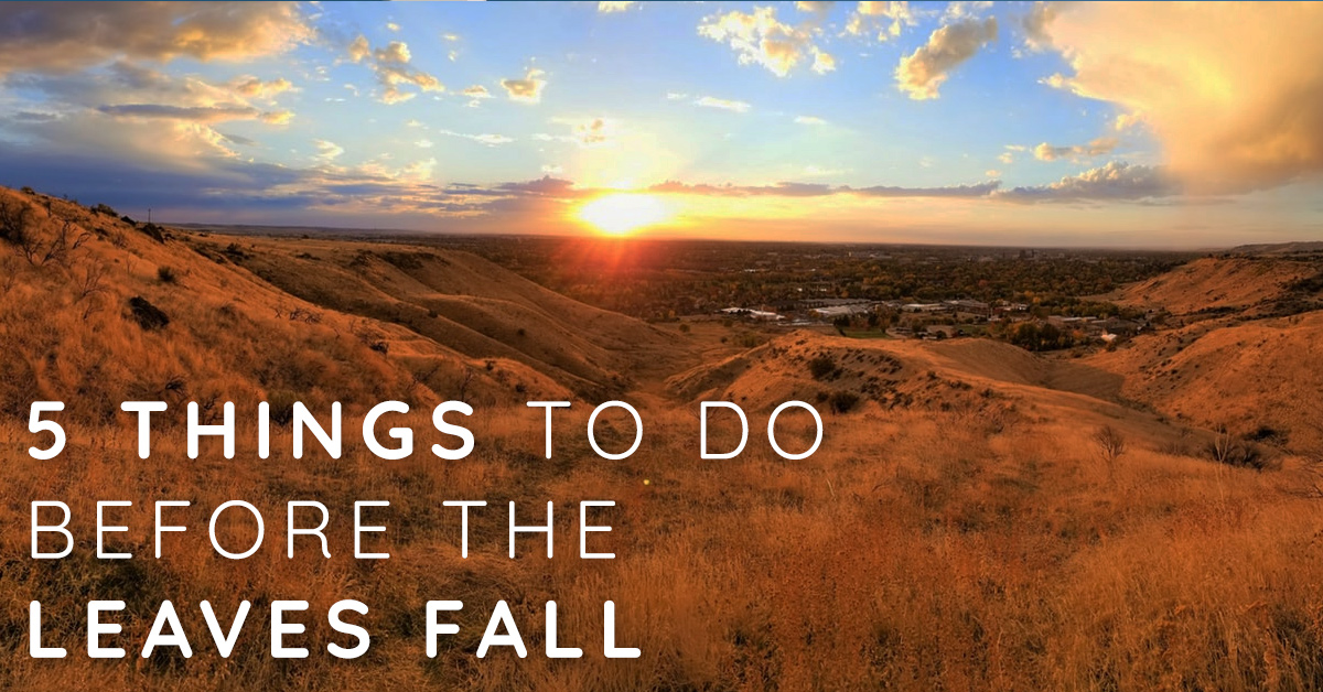 5 Things To Do in Boise Before the Leaves Fall