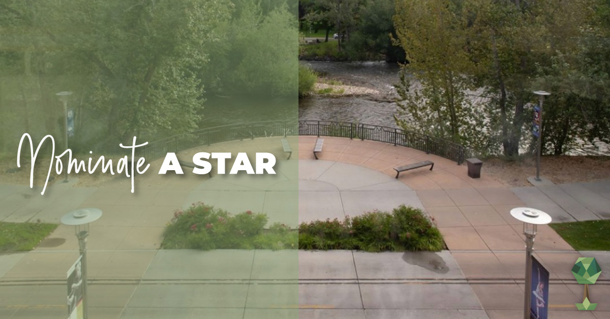 Nominate a Star in Your Boise Community