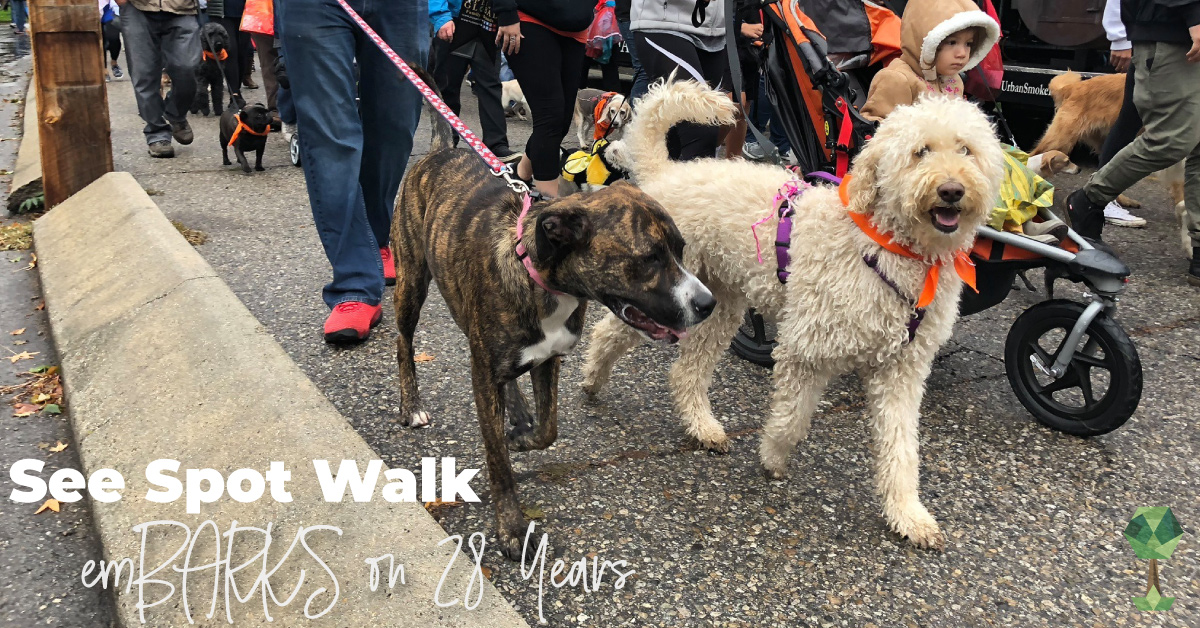 See Spot Walk emBARKS on 28 Years